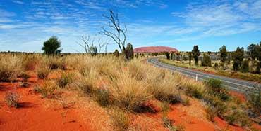 Travel Australia Travel Buddy